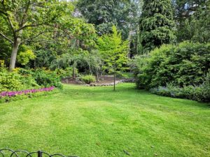 How to get rid of crabgrass and quackgrass