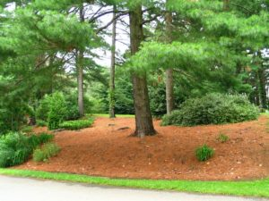 HOA landscaping projects