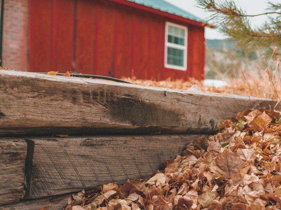 yearly fall yard cleanup services