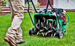 aerating your lawn is important in autumn