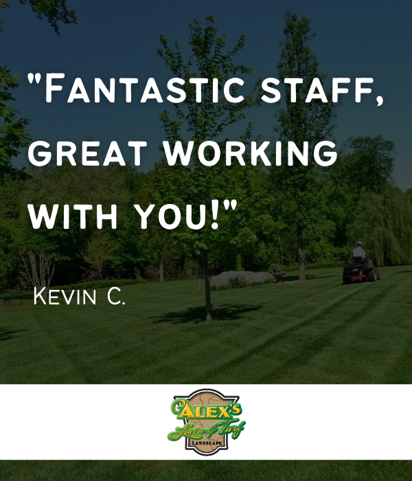 Alex Lawn & Turf - snow & lawn service in MN