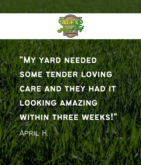 Alex Lawn & Turf - Lawn & snow service in MN