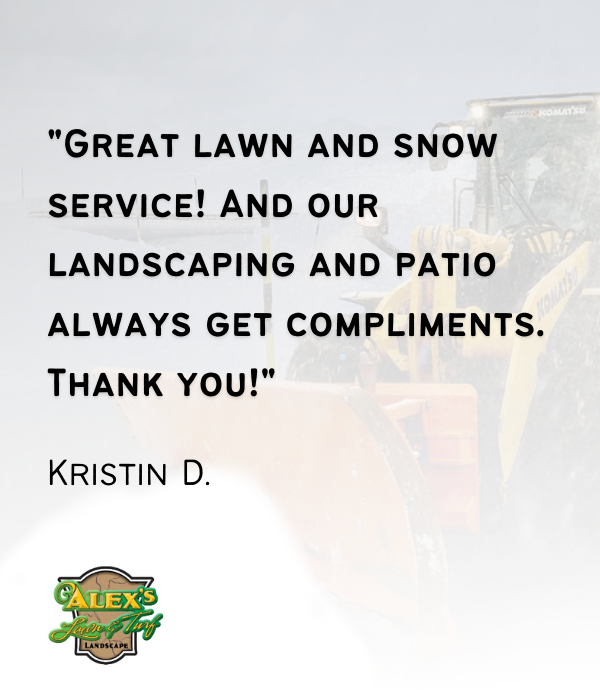 Alex Lawn & Turf - Lawn & snow professionals in MN